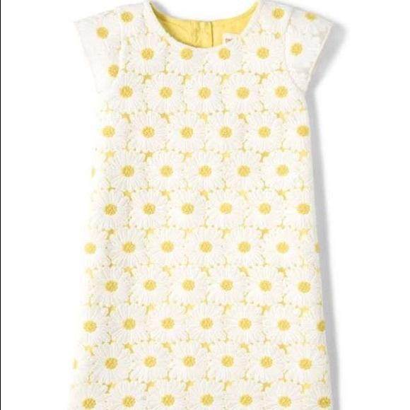 4T- Girls Daisy Lace Shift Dress- Garden Party